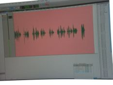 Here's what a recorded book looks like to the computer. Do you think it knew it was recording a romance? Or does it always turn pink...